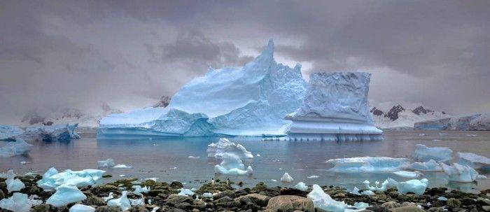Antarctica Arnold Zageris