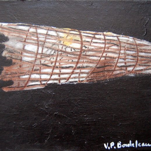 Trappe à poissons - Virginia Pesemapeo-Bordeleau