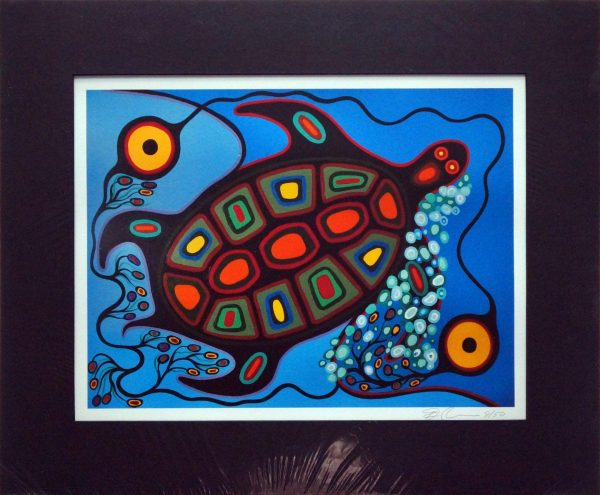 Reproductions - Turtle - Frank Polson