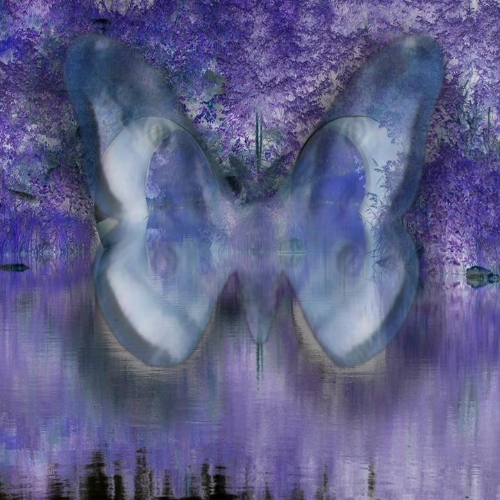 13_Étude de tuyaux et d'un papillon no.2 jpeg